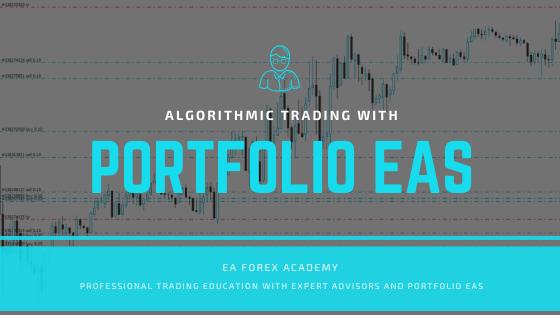 portfolio expert